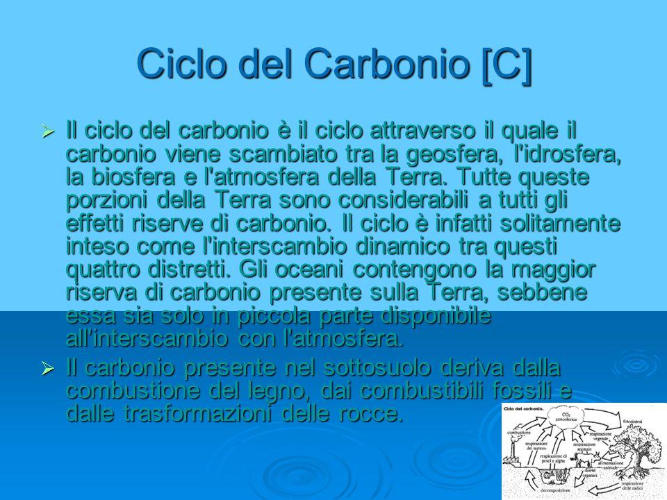 Ciclo del Carbonio [C]